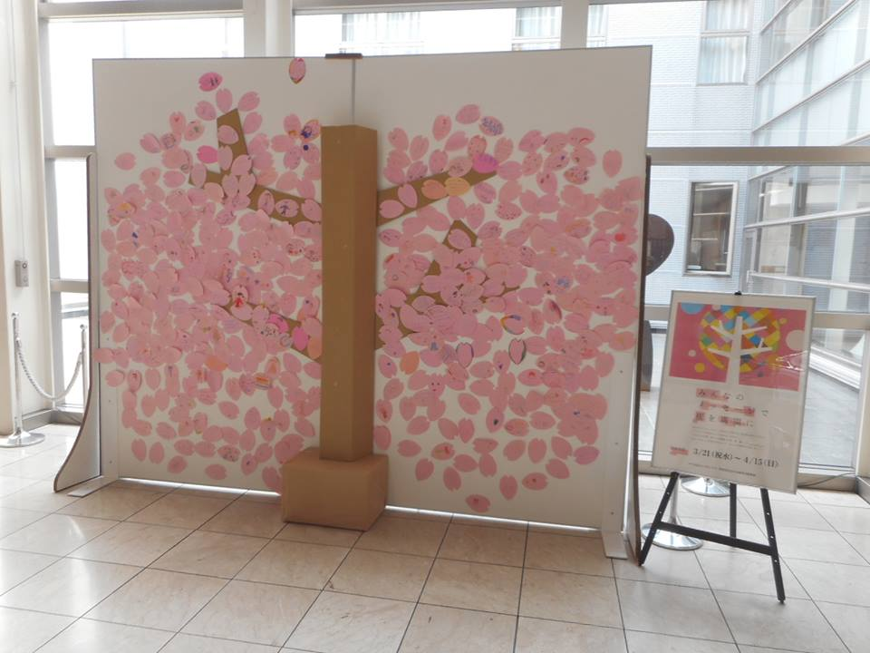 門真市ルミエールホール、みんなで咲かせた桜が満開になりました